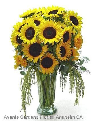 35 best images about Sunflower City! on Pinterest   Flower