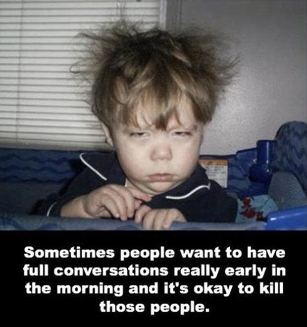 Funny Have A Great Day Quotes Daily Inspiration Quotes