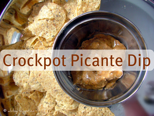 Crockpot Picante Dip