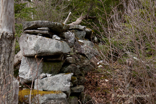 Mill Ruins at Stone Flume (12 of 16).jpg