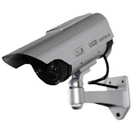 SPT Security Systems 15-CDM20 Dummy Camera with Solar Powered LED Light Silver