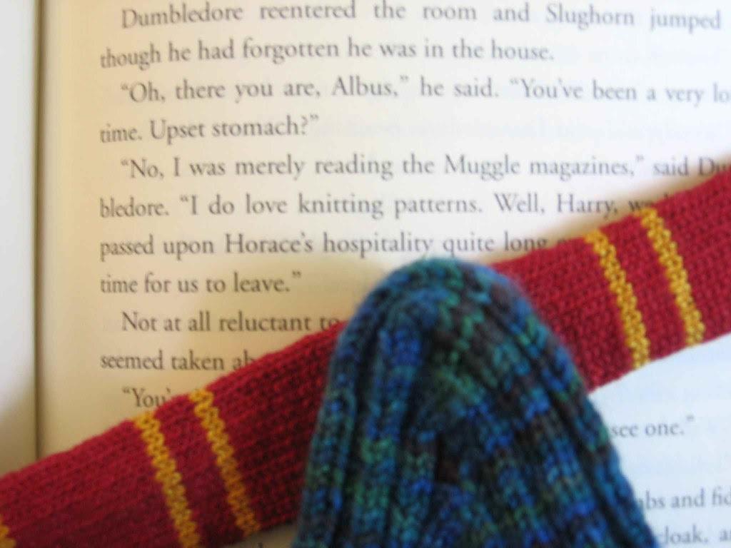 Sockapal-2-za sock loves knitting!