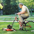 Mowing for a healthy lawn | Mountain High Tree