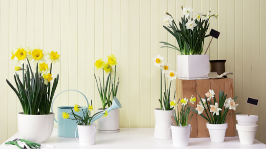 4 ways to update your rooms ahead of Spring