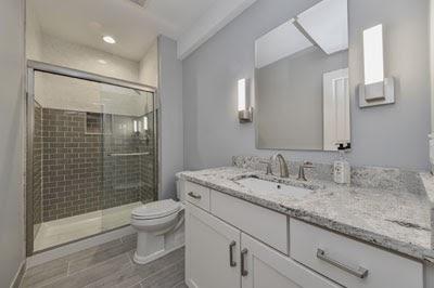 100 Finest Toilet Renovation Photos