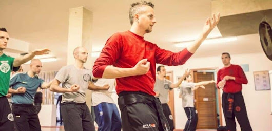 Mauro Gibin: Going Back to the Roots of Wing Chun » Wing Chun Illustrated