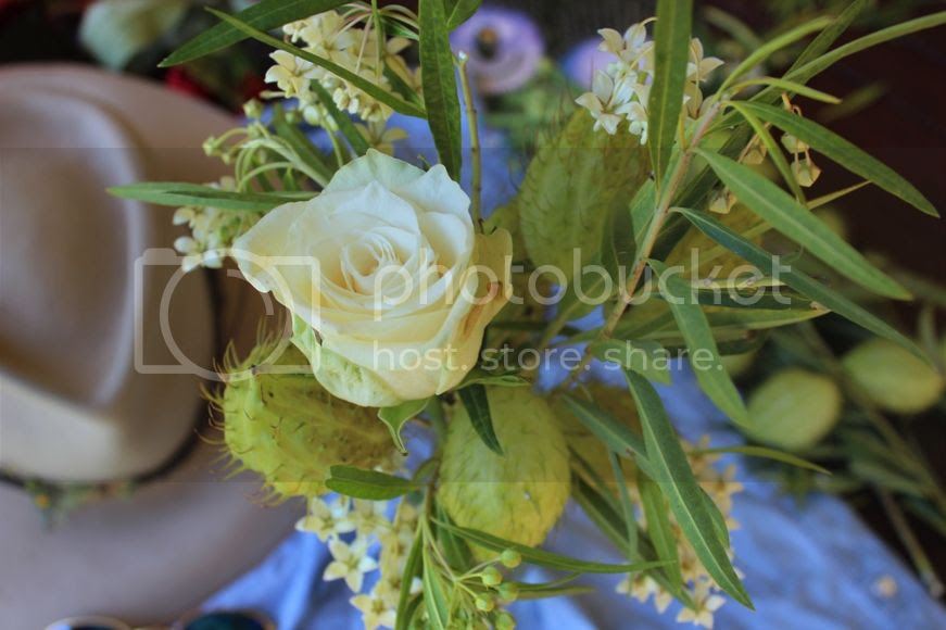 photo blog1_zpsbe91a935.jpg