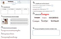 Cromignon : texte et exploitation au complet !