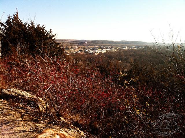 IMG_2777e Scenic Overlook