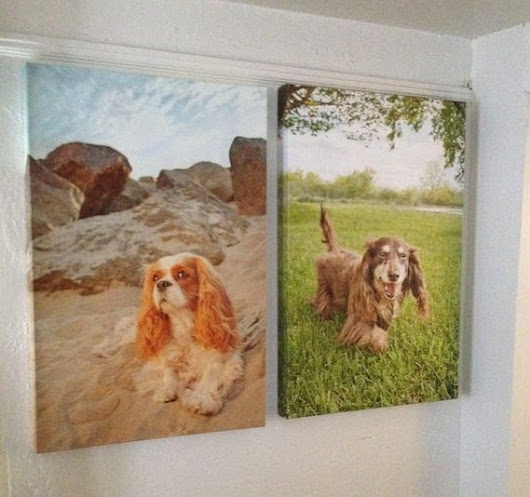 Set of Two Large Dog Art Canvases