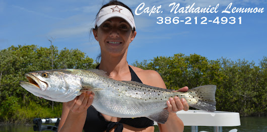 Mosquito Lagoon Fishing Report - Indian River Lagoon Fishing Report -St. Johns River - Ponce Inlet Fishing Report - Florida Fishing Report  - Capt. Nathaniel Lemmon