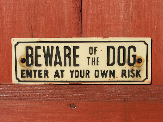 Do I Need a Security System If I Have a Dog?