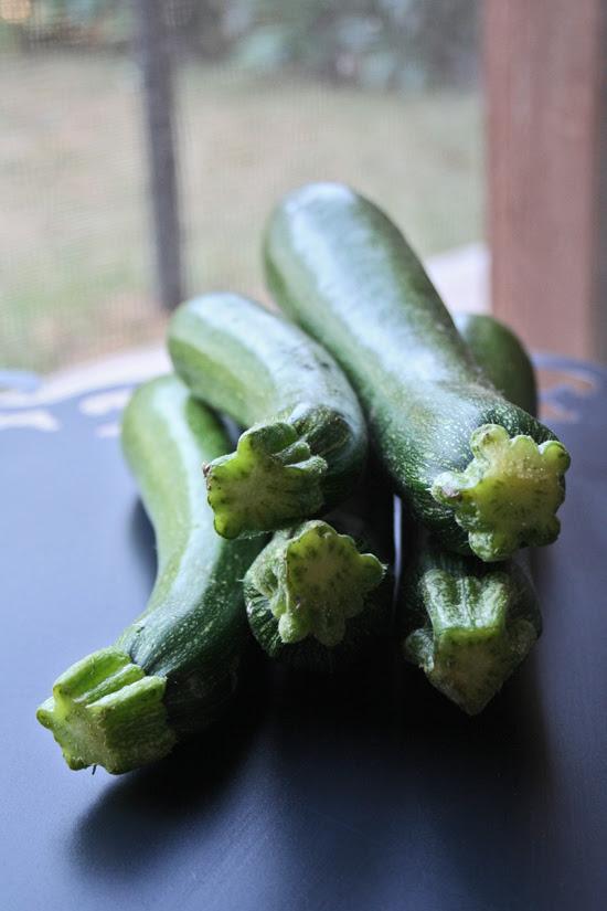 zucchine 1