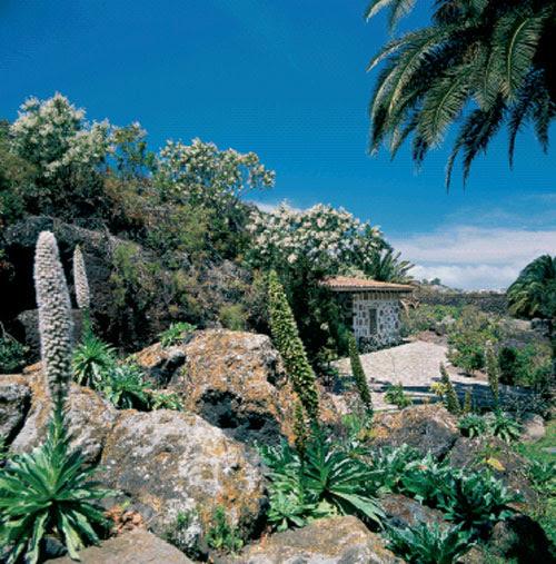 http://www.rinconesdelatlantico.com/num1/jardin/001.jpg