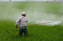 Study Reveals Cause of Pesticide Exposure and Parkinson's Link