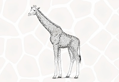 How to Draw a Giraffe and a Giraffe Pattern