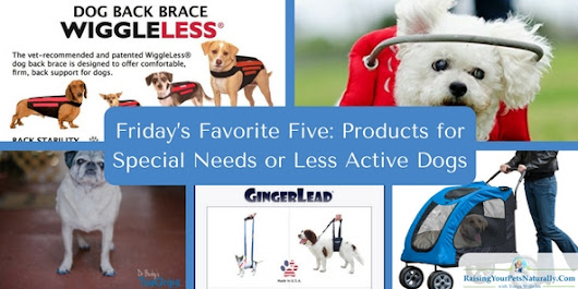 Friday's Favorite Five: Products for Special Needs or Less Active Dogs ~ Raising Your Pets Naturally with Tonya Wilhelm