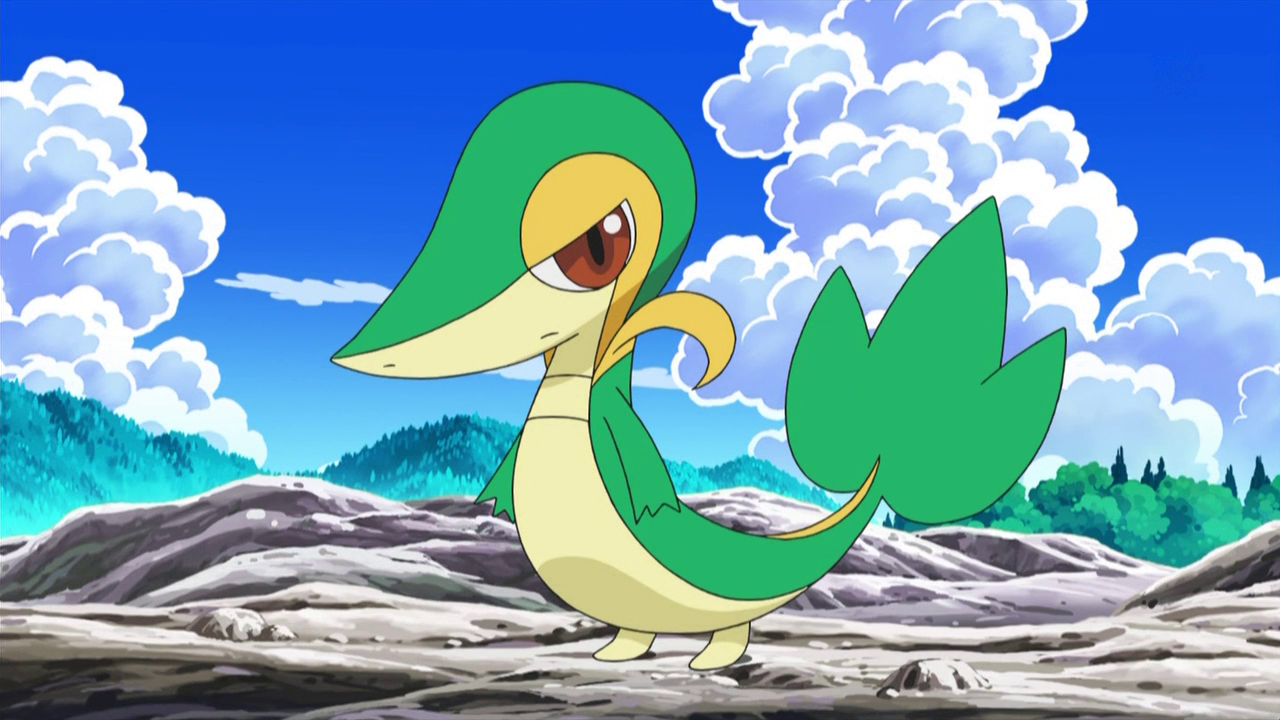 http://images.wikia.com/pokemusketeers/images/c/c1/Tripp_Snivy.png