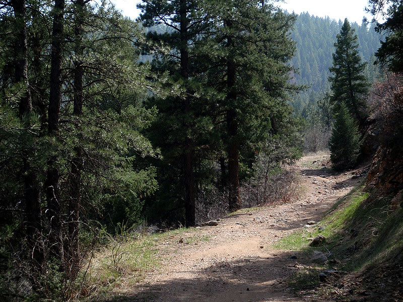The joint start of Trail 800 and the Colorado Trail.