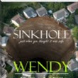 Lynnette's Book World: Sinkhole by Wendy Reakes: Claims to be a contemporary Jules Verne but I don't know about that!