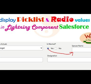 Get Picklist Value Dynamic and display Picklist values & Radio Buttons value in Lightning Component