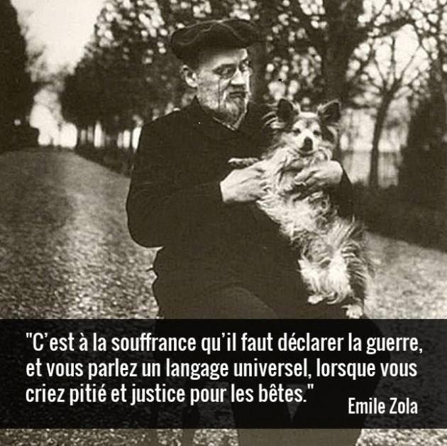 Zola2