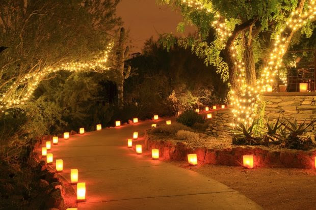 Tips on Using Proper Lighting to Transform Your Outdoor Space
