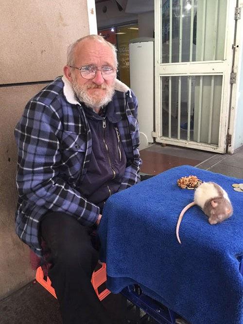 Un hombre sin hogar pide ayuda para recuperar a su mascota Lucy, una ratita que le fue robada