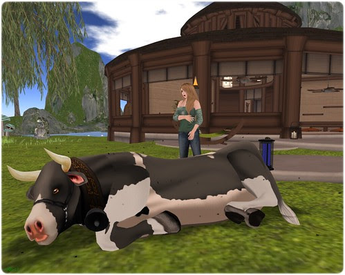 Day 76 - This cow is sick