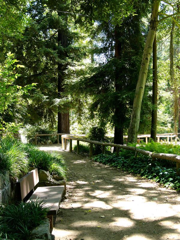 ferndell bench