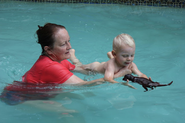 Swimming with Grandma & Grandpa Mimi