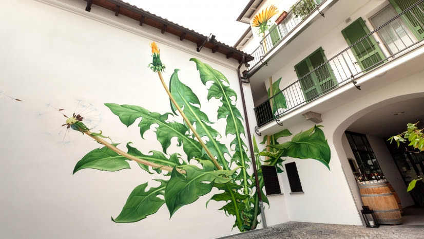 Mona Carons Murals of Weeds Slowly Overtake Walls and Buildings street art plants murals flowers