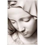 Madonna by Spider Mary Black & White Sculpture Art Poster Print - Medium