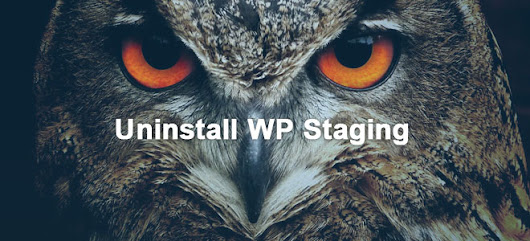 How to Uninstall WP Staging Completely