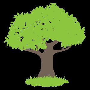 樫の樹1 花植物イラスト Flode Illustration フロデイラスト