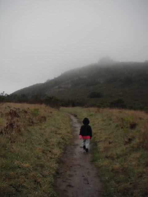 hiking from Point Reyes Coast Camp