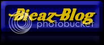 bieaz blog