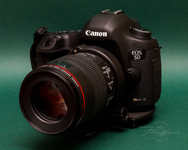 Introducing the Canon EOS 5D Mark III