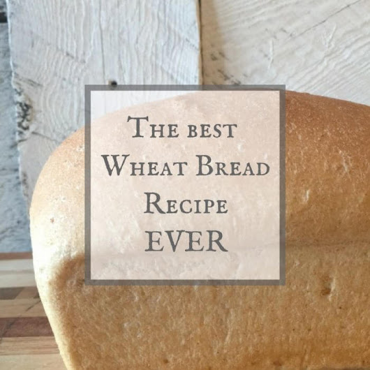 The Best Wheat Bread Recipe Ever | Lets Bake! - Twelve On Main