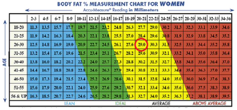 body fat percentage went up
