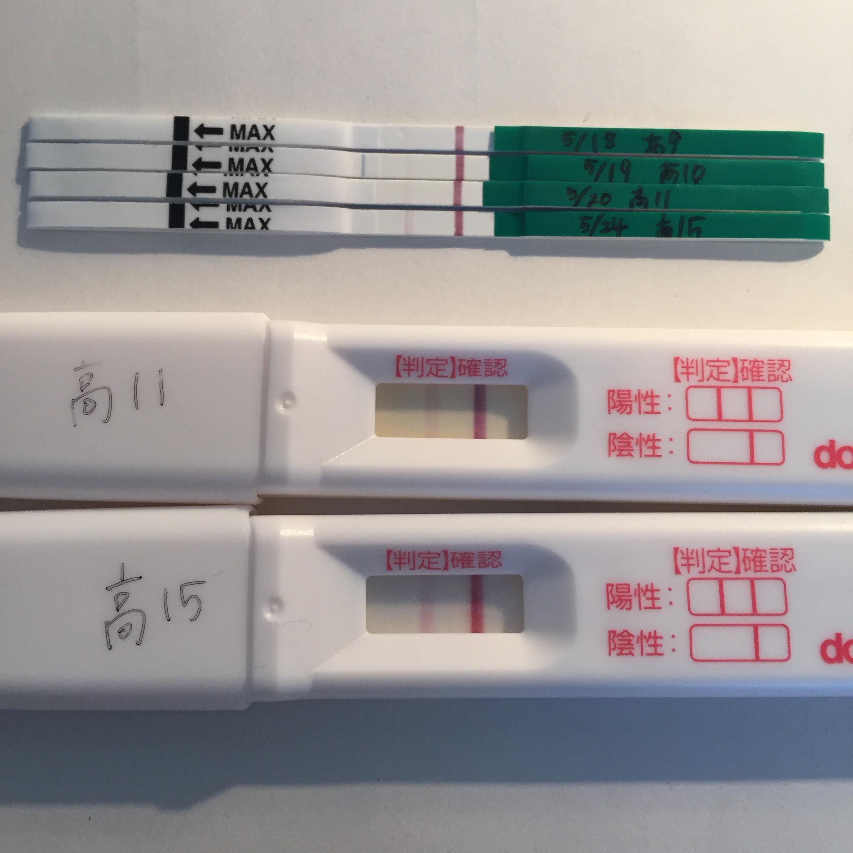 高温 期 14 日 目 高温期14日目にてリセットしました りぃの妊活ブログ