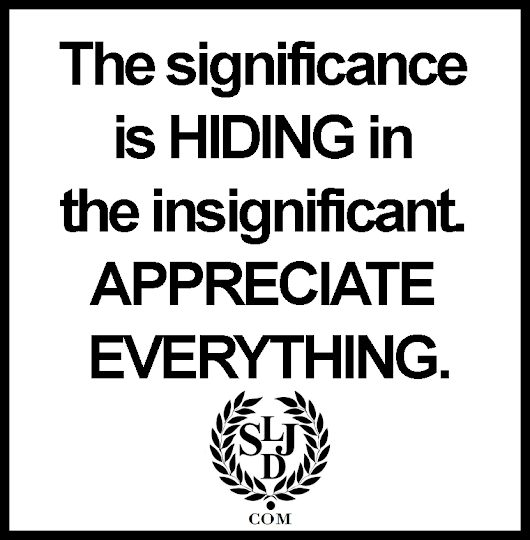 Quotes To Live By: The Significance Is Hiding…