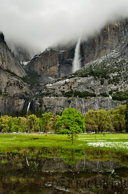 Yosemite Falls and reflection - Pat Ulrich Nature Photography