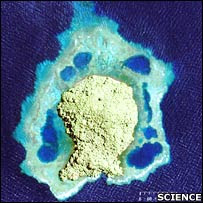 Satellite image of the Kimbe Island  (Science)
