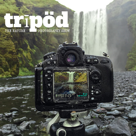 Tripod: The Nature Photography Show by Improve Photography on iTunes