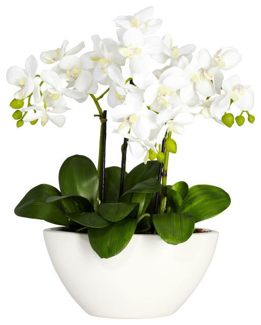 Phalaenopsis with White Vase Silk Flower Arrangement  Transitional  Artificial Flowers Plants