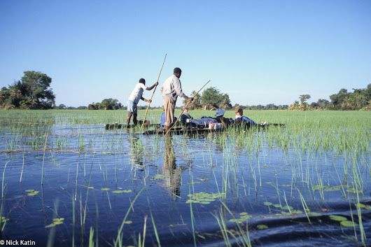 African shoestrings – Botswana Day Seventy-Eight to Eighty Okavango