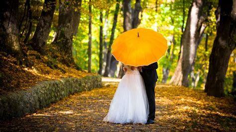 Wedding couple kisses behind umbrella   HD Wallpapers Rocks