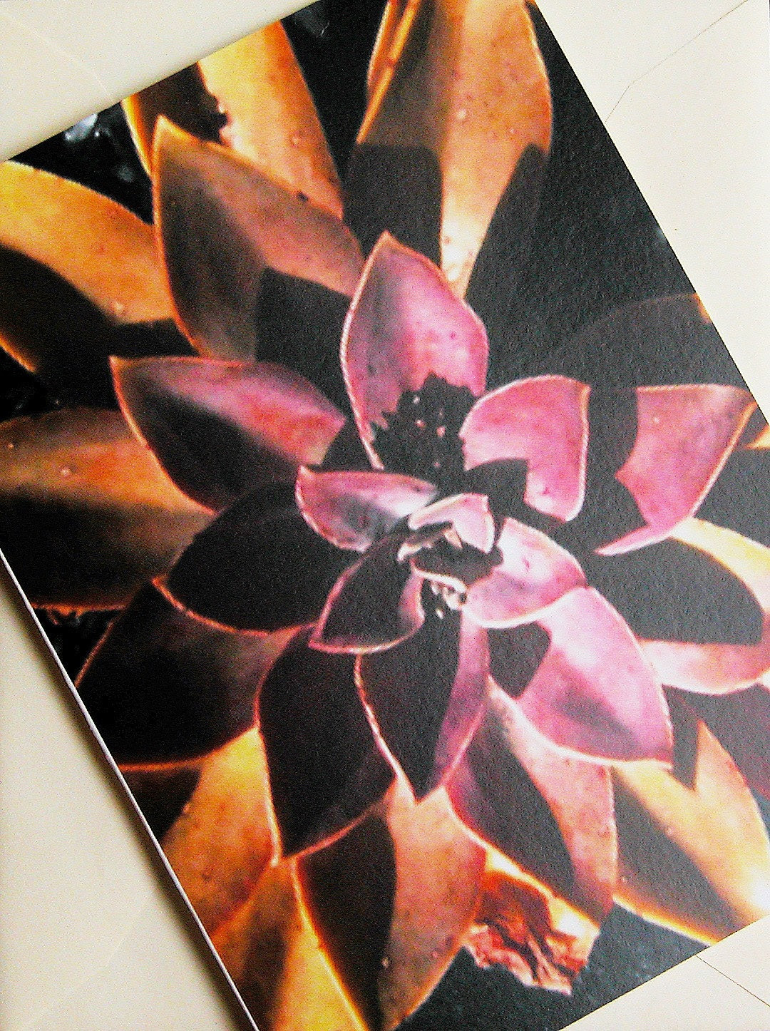 Blank Notecard-Succulent Flower-Custom personalized message available.