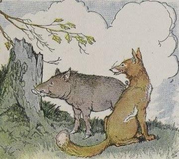 THE WILD BOAR AND THE FOX